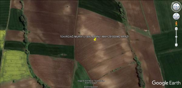 Tekirdağ Muratlı Balabanlı Mahallesinde Satılık Tarla 29.000m2